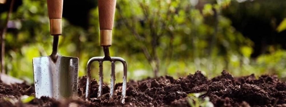 Comprar Fertilizante Foliar Líquido