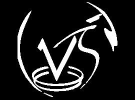 Logo Rodapé Vitor Seiti Engenharia