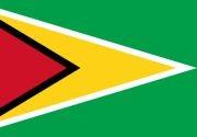 Representante sementes JA - Guyana
