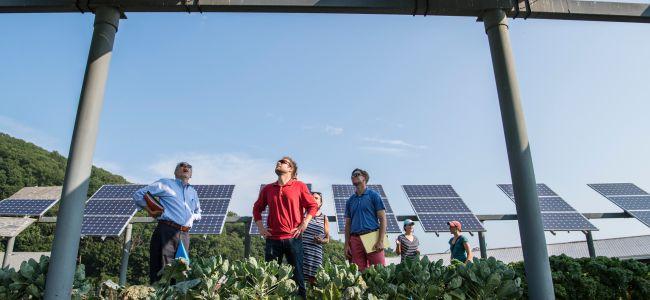 Imagem Venda e Instalação de Sistemas Fotovoltaicos On-Grid