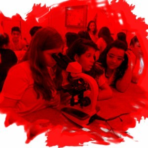 Ensino Fundamental 2 em Rio Preto