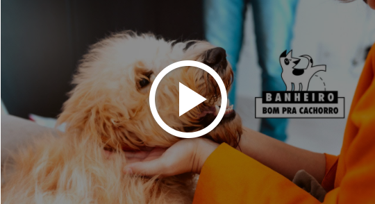 Banheiro Bom pra Cachorro - Seja H3C
