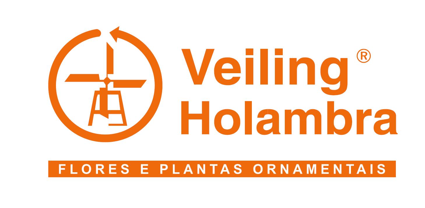 Logo Cooperativa Veiling Holambra
