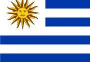 Representante sementes JA - Uruguai