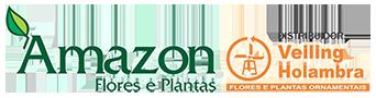 Logo Amazon Flores